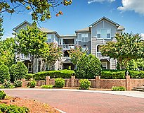 Raleigh, NC Apartments - Edinborough Commons Apartments, A Greystar Avana Community