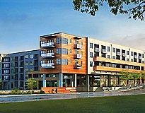 Austin, TX Apartments - Tree Apartments