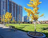 Charlotte, NC Apartments - Element Uptown Apartments