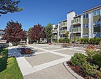 Tukwila, WA Apartments - Foster Creek