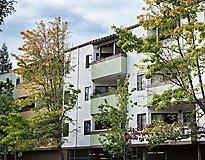 Hayward, CA Apartments - Creekwood Apartments