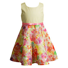 Young Land Sleeveless Skater Dress - Toddler Girls