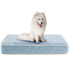 Sleep Philosophy Tavis Quilted Memory Foam Orthopedic Napper Dog Bed
