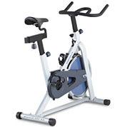 Weslo® Pursuit Indoor Cycle