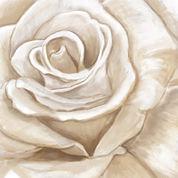 PTM Images™ White Roses I Wall Art