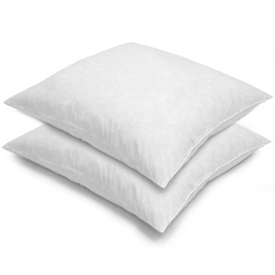 euro square feather 2pack pillows