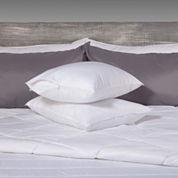 Allergen Barrier 2-Pack Pillow Protector
