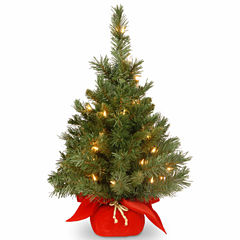 National Tree Co. 2 Foot Majestic Fir Pre-Lit Christmas Tree