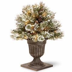 National Tree Co. 2 Foot Glittery Bristle Pine Porch Pre-Lit Christmas Tree