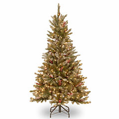 National Tree Co. 5 Foot Frosted Fir Slim Pre-Lit Christmas Tree