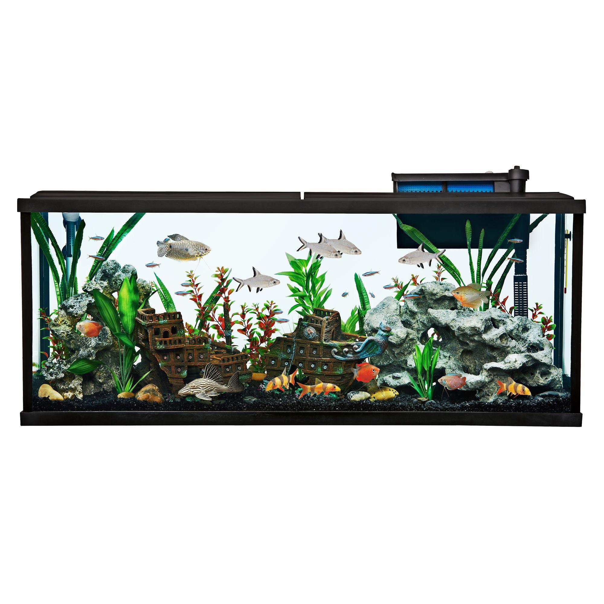 Aquarium top usa for 55 gallon fish tank kit