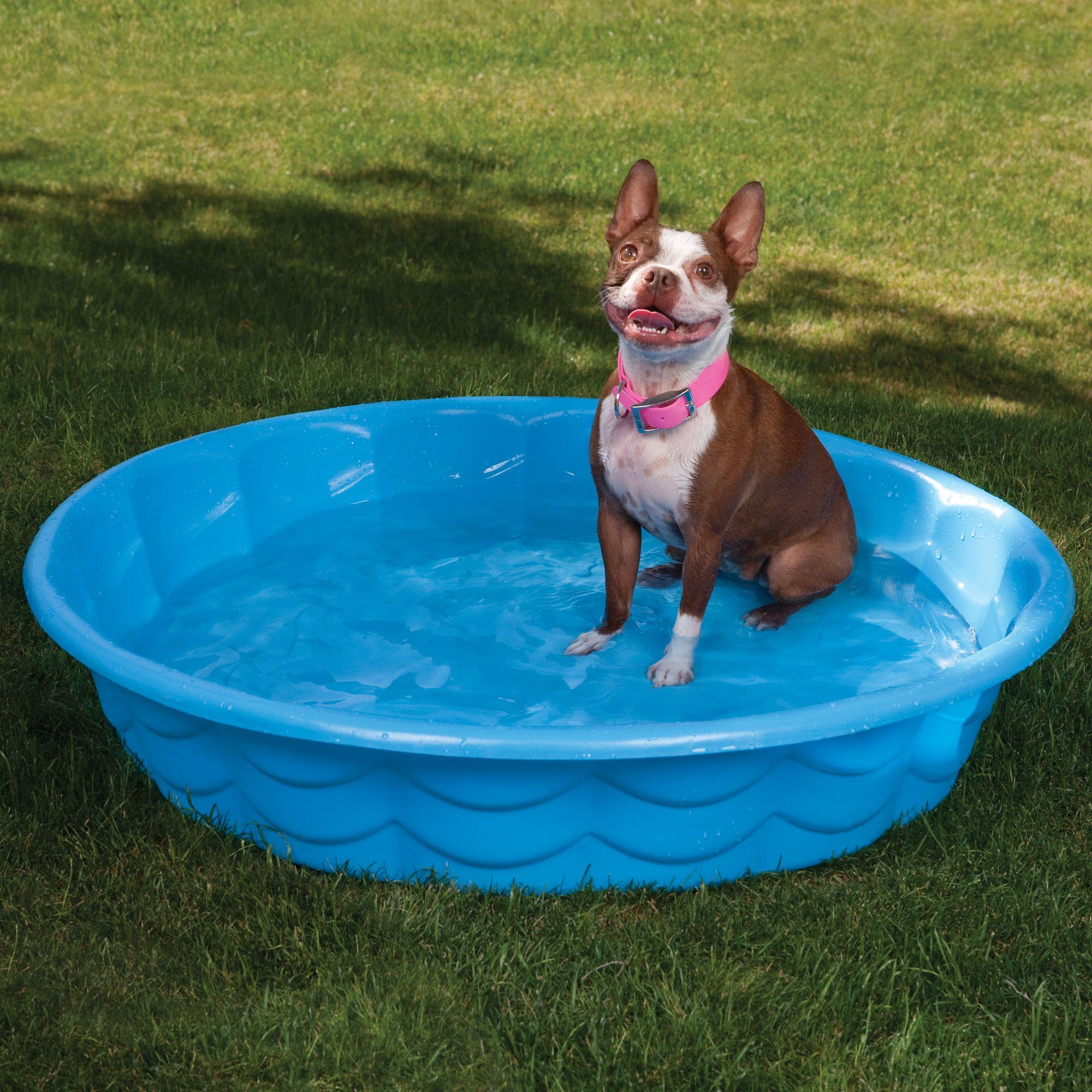 Summer Escapes Poly Pool Pet Bath Size 35l X 35w X 6h Blue