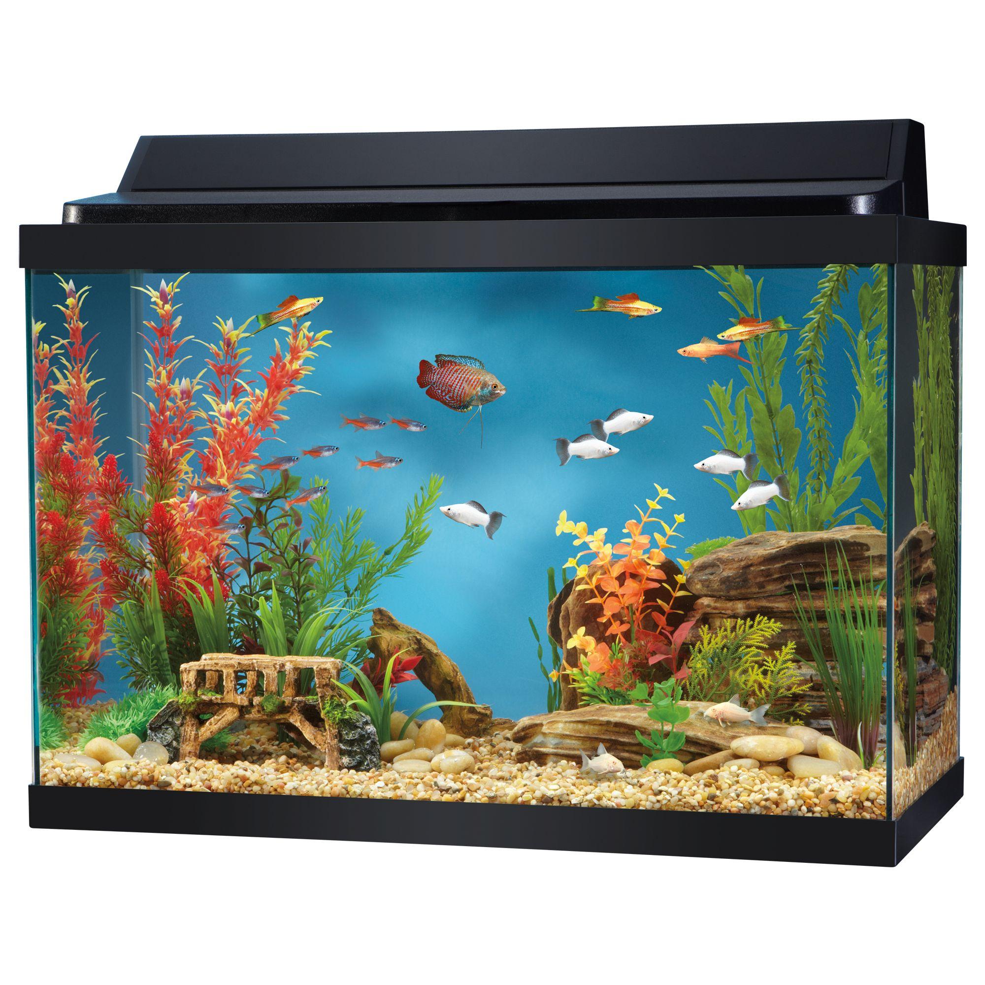 Aquarium hood usa for Used fish tanks for sale many sizes