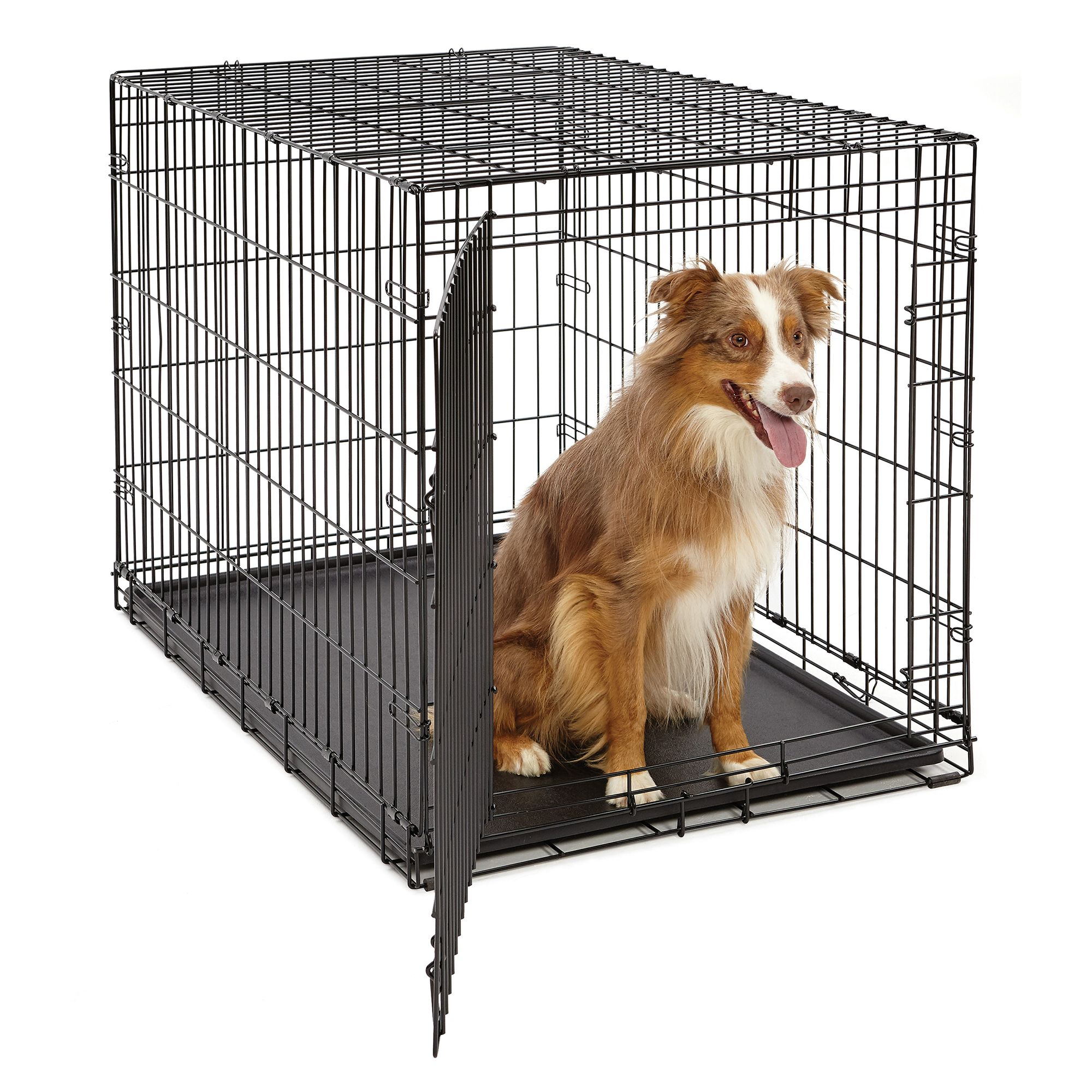 Midwest Life Stages Single Door Folding Dog Crate Size 36l