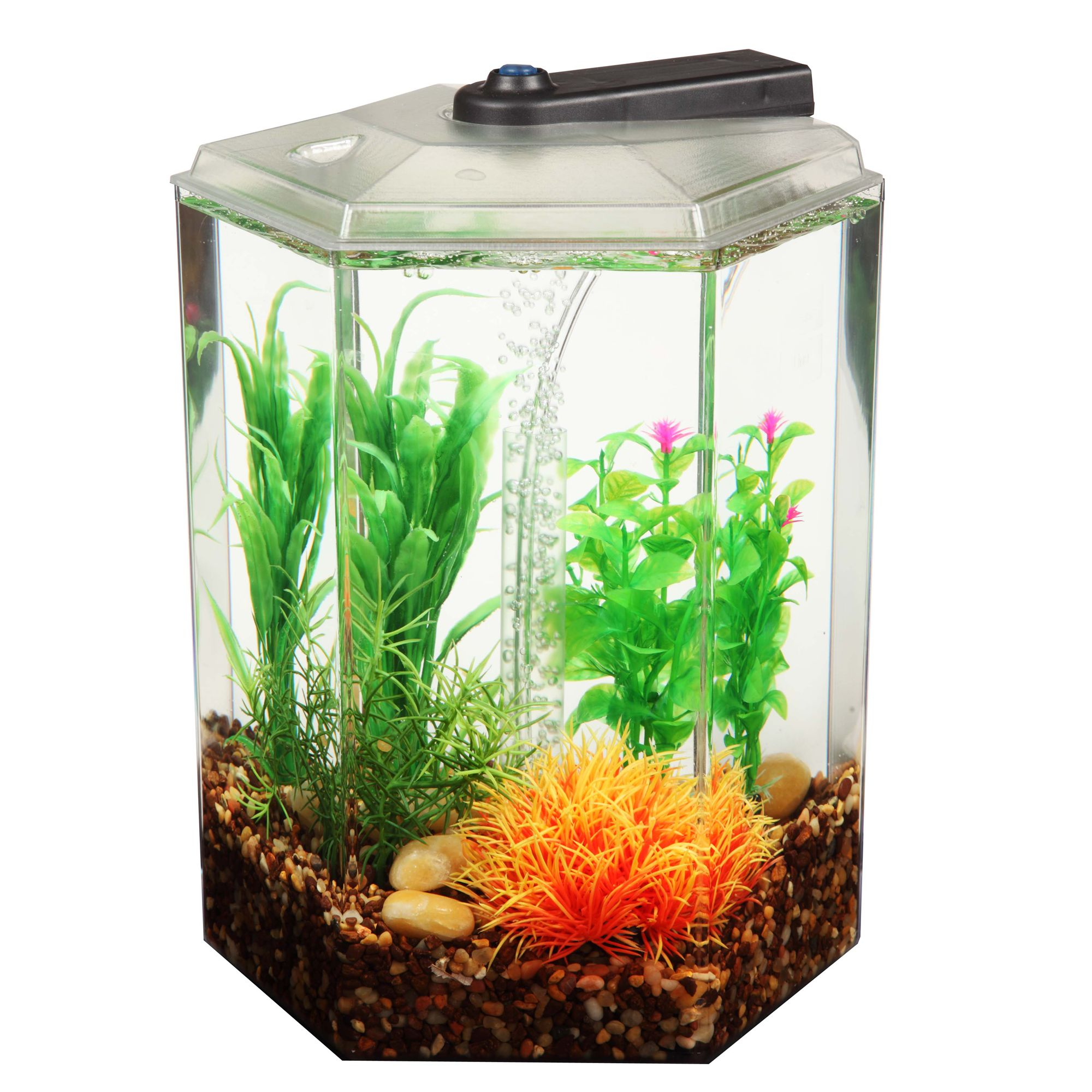 Aquarium top usa page 2 for Fish tank supplies