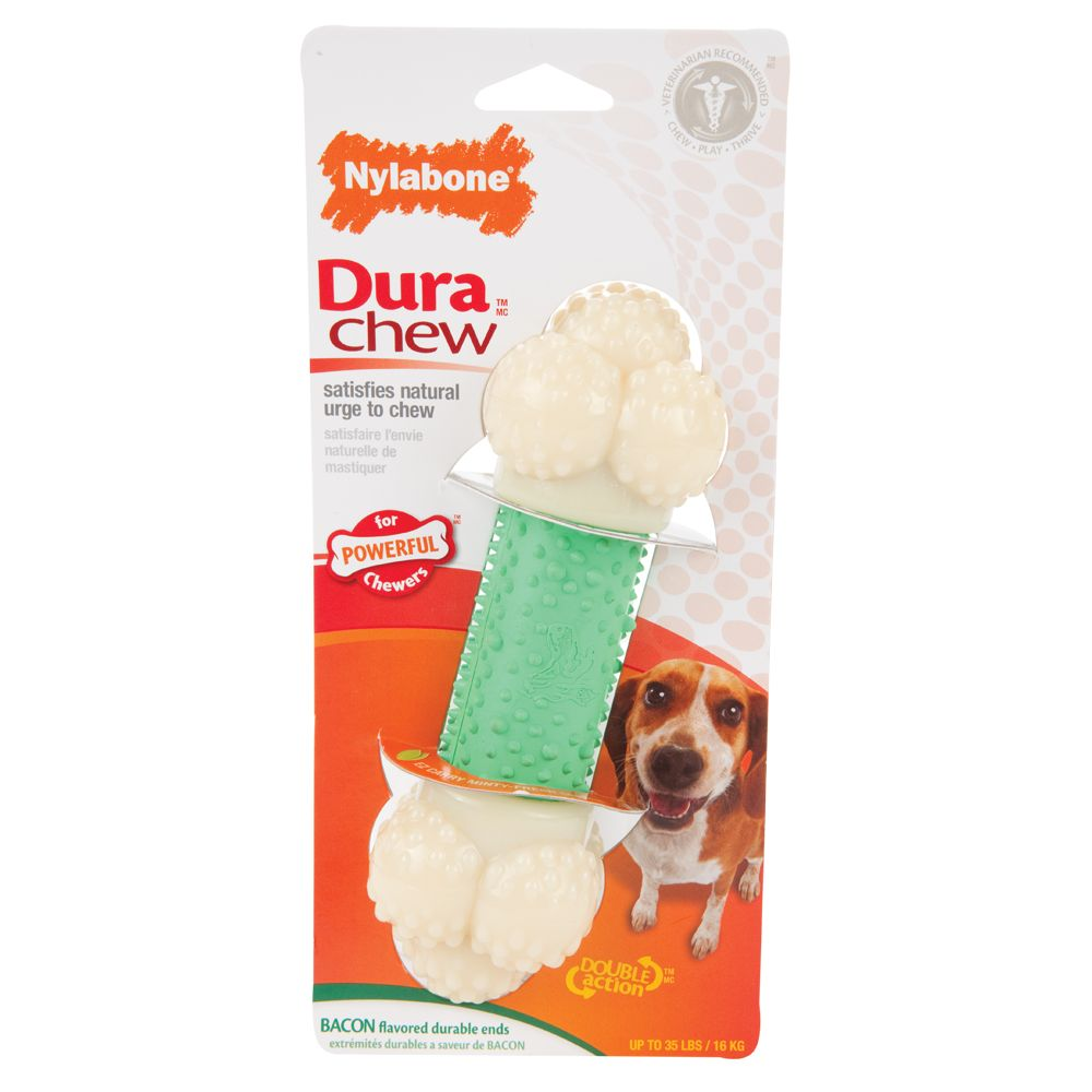 Nylabone DuraChew Double Action Chew Bone Dog Toy size: Regular, Green 5081151
