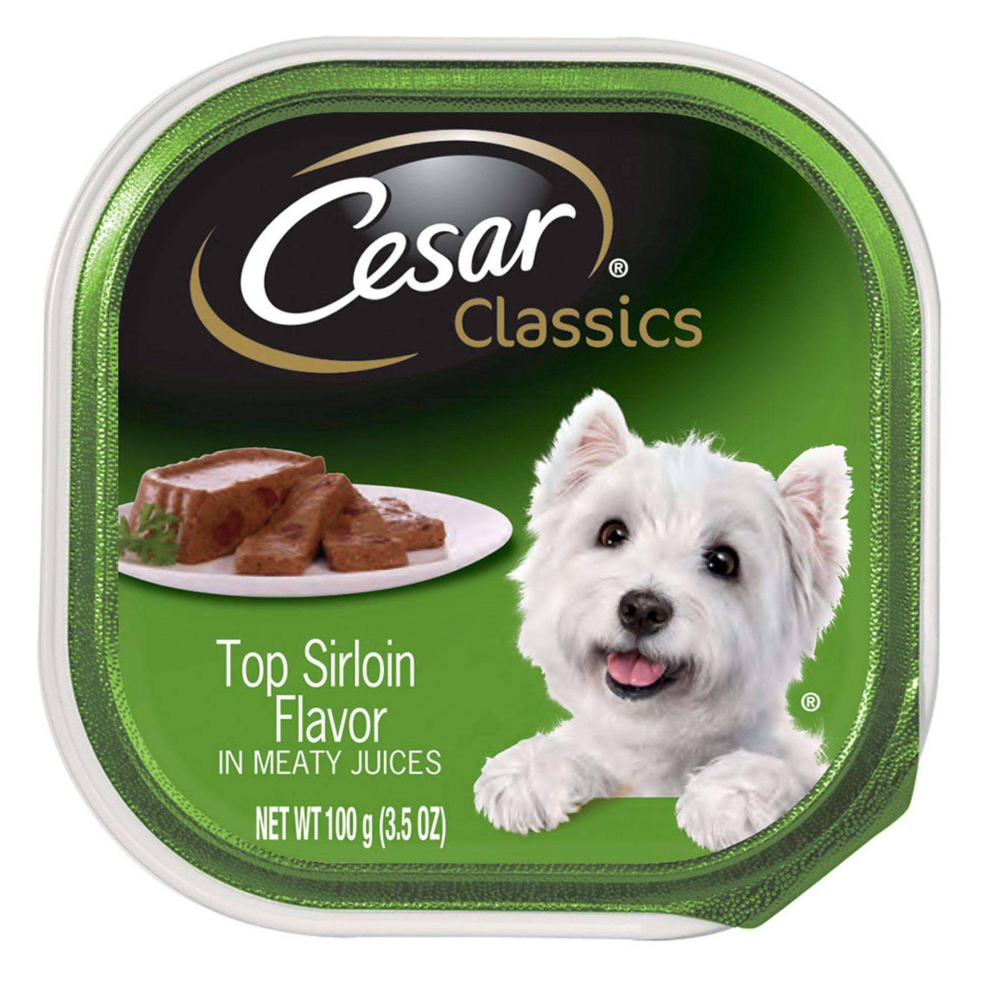Cesar® Canine Cuisine Adult Dog Food size: 3.5 Oz