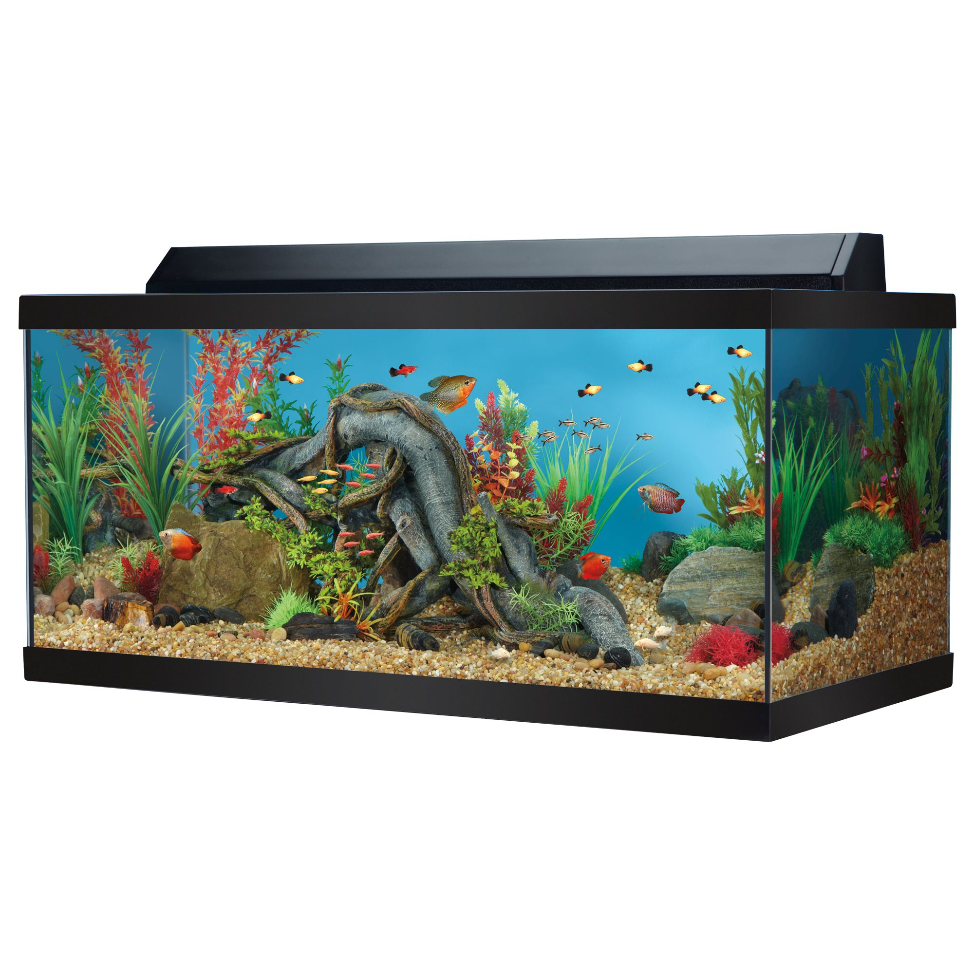 Aquarium top usa for Fish tank and stand combo