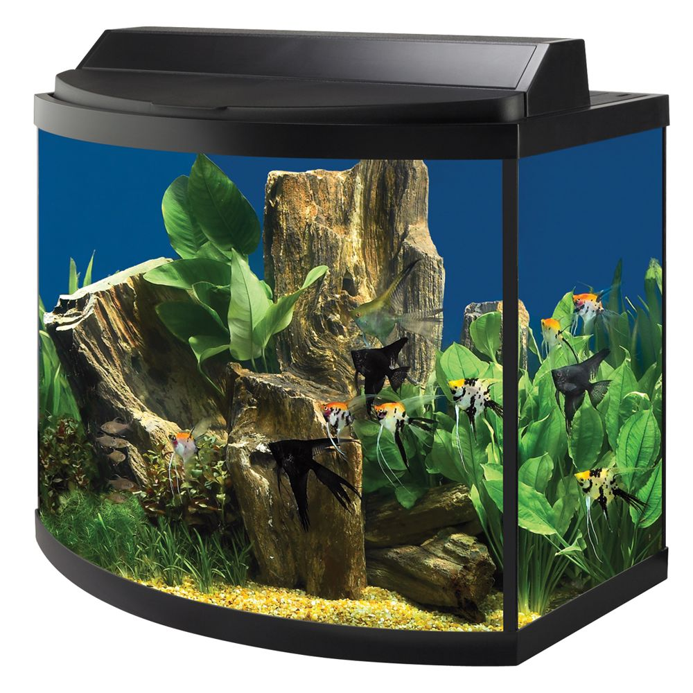 Aqueon usa for 38 gallon fish tank