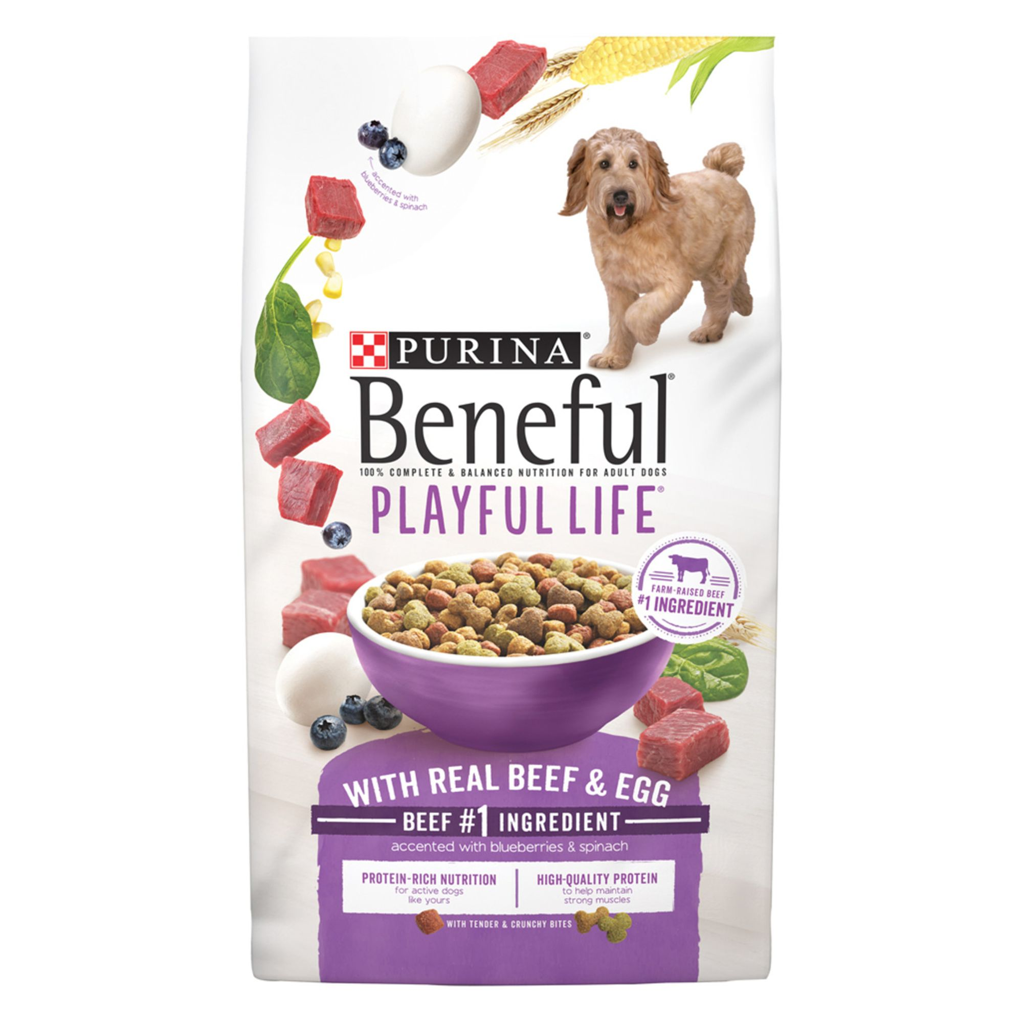 Purina® Beneful® Playful Life Adult Dog Food - Beef