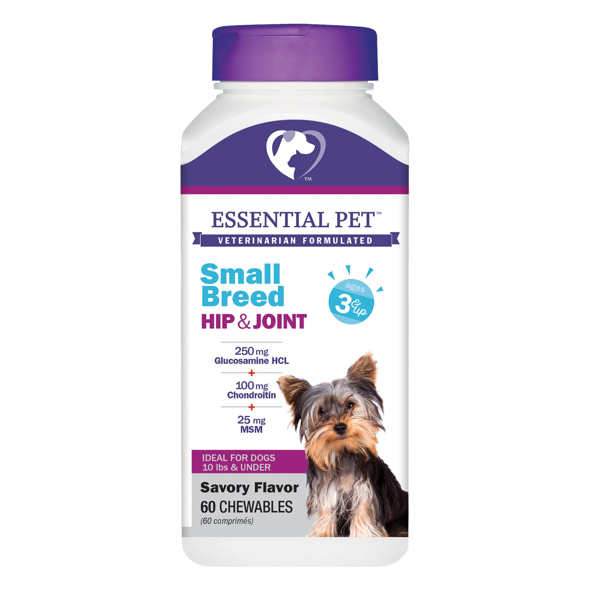 21st Century Glucosamione And Chondroitin Small Breed Joint Support Size 60 Count
