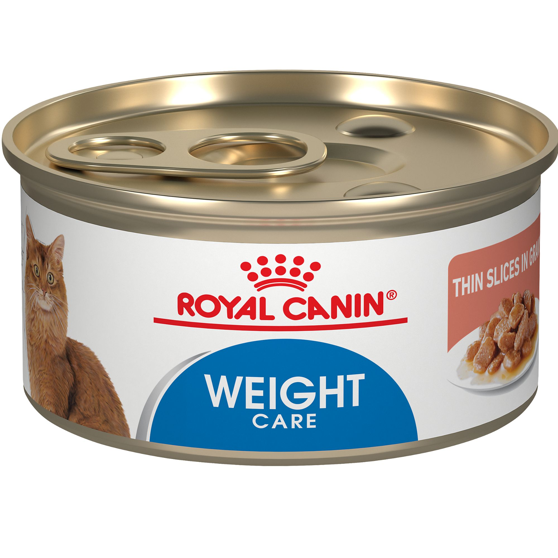 Royal Canin Gastrointestinal Cat Food Ebay