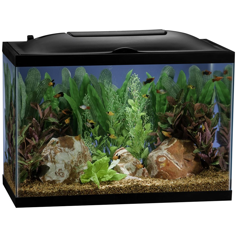 Marineland® 20 Gallon BioWheel LED Aquarium Kit size: 20 Gal 5154528