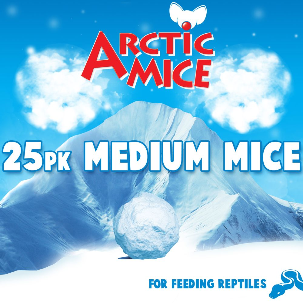 Arctic Mice Medium Frozen Mice Size 25 Count