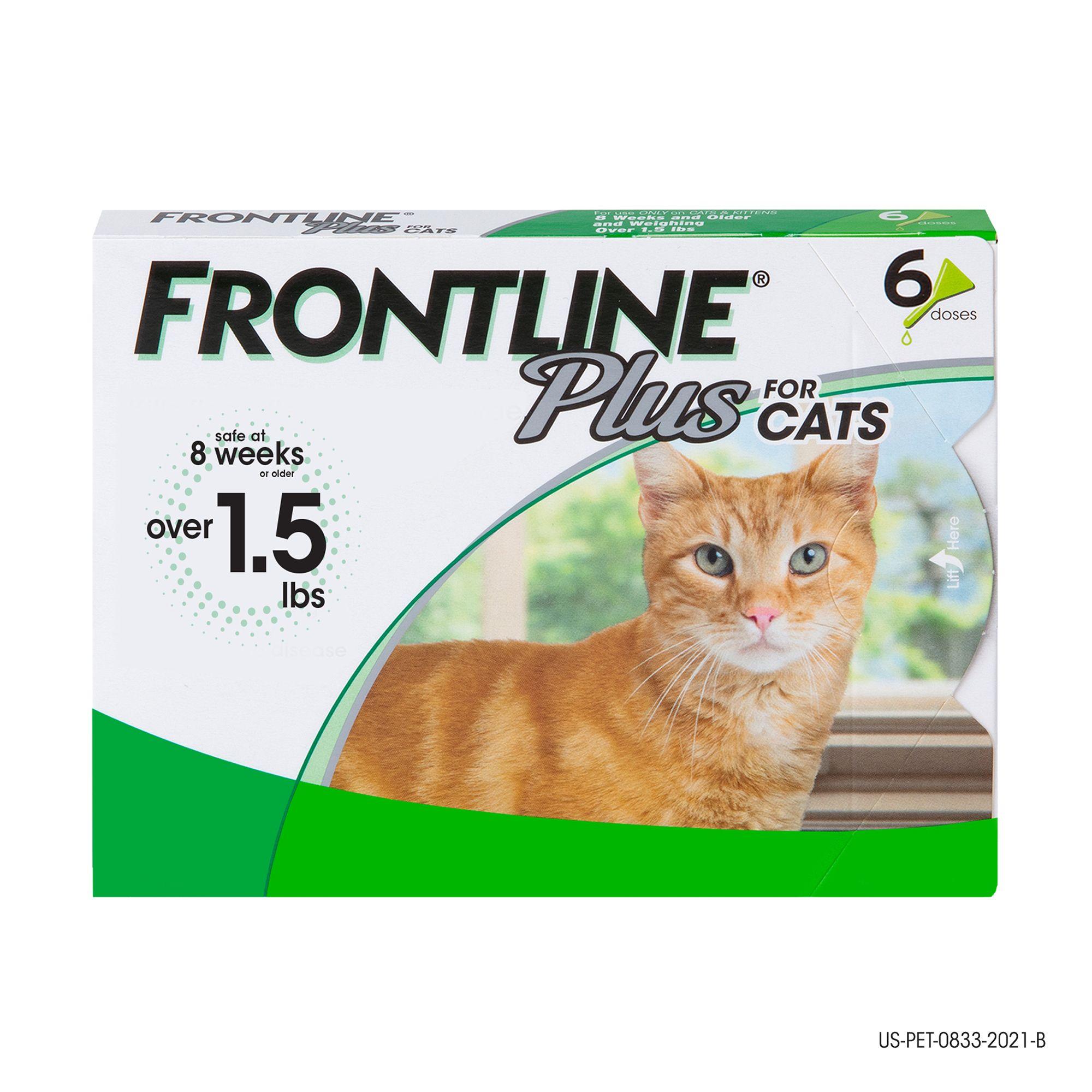 Frontline Plus Cat Flea And Tick Treatment Size 6 Count