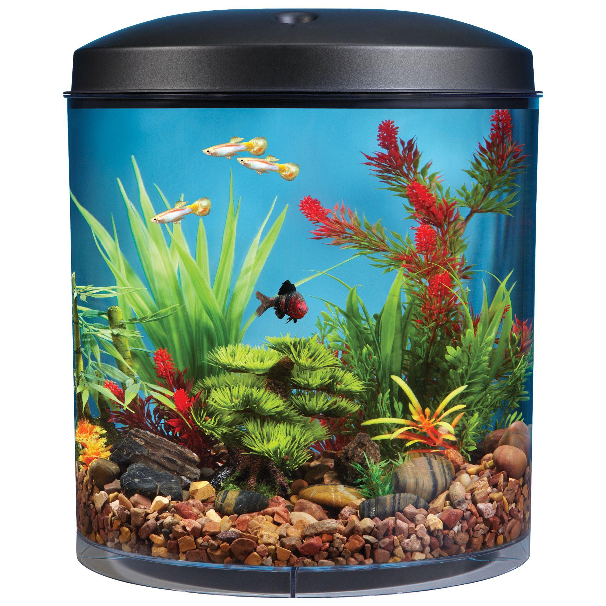 Top Fin® Aquascene 180 3.5 Gallon Aquarium, Black 5162489