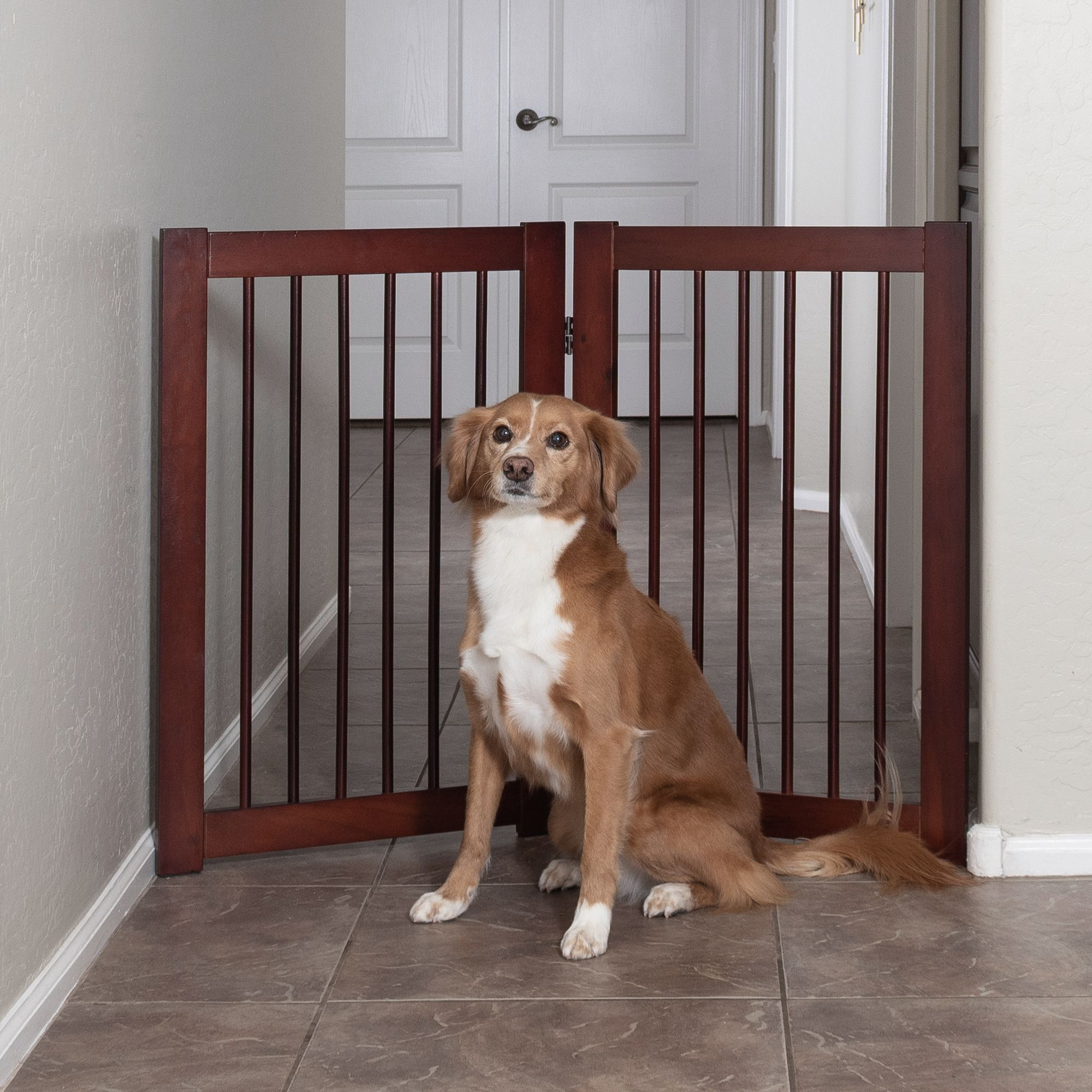 "Primetime Petz 360 Configurable 2-Panel Increase Gate size: 40.7""L x 30""H"