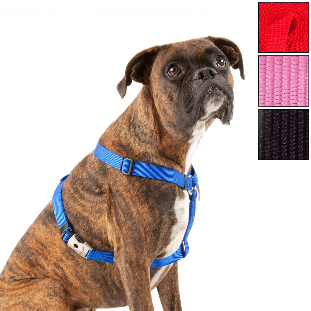 Top Paw Signature Dog Harness size: X Small, Black 5163040