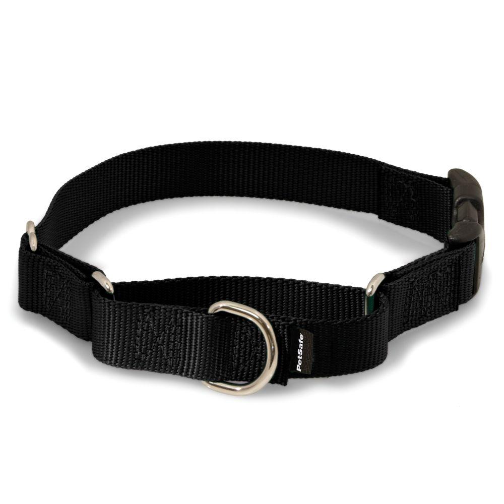 PetSafe Slip On Martingale Dog Collar