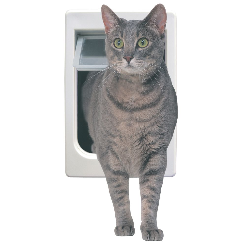 Ideal Pet Products 4 Way Cat Flap