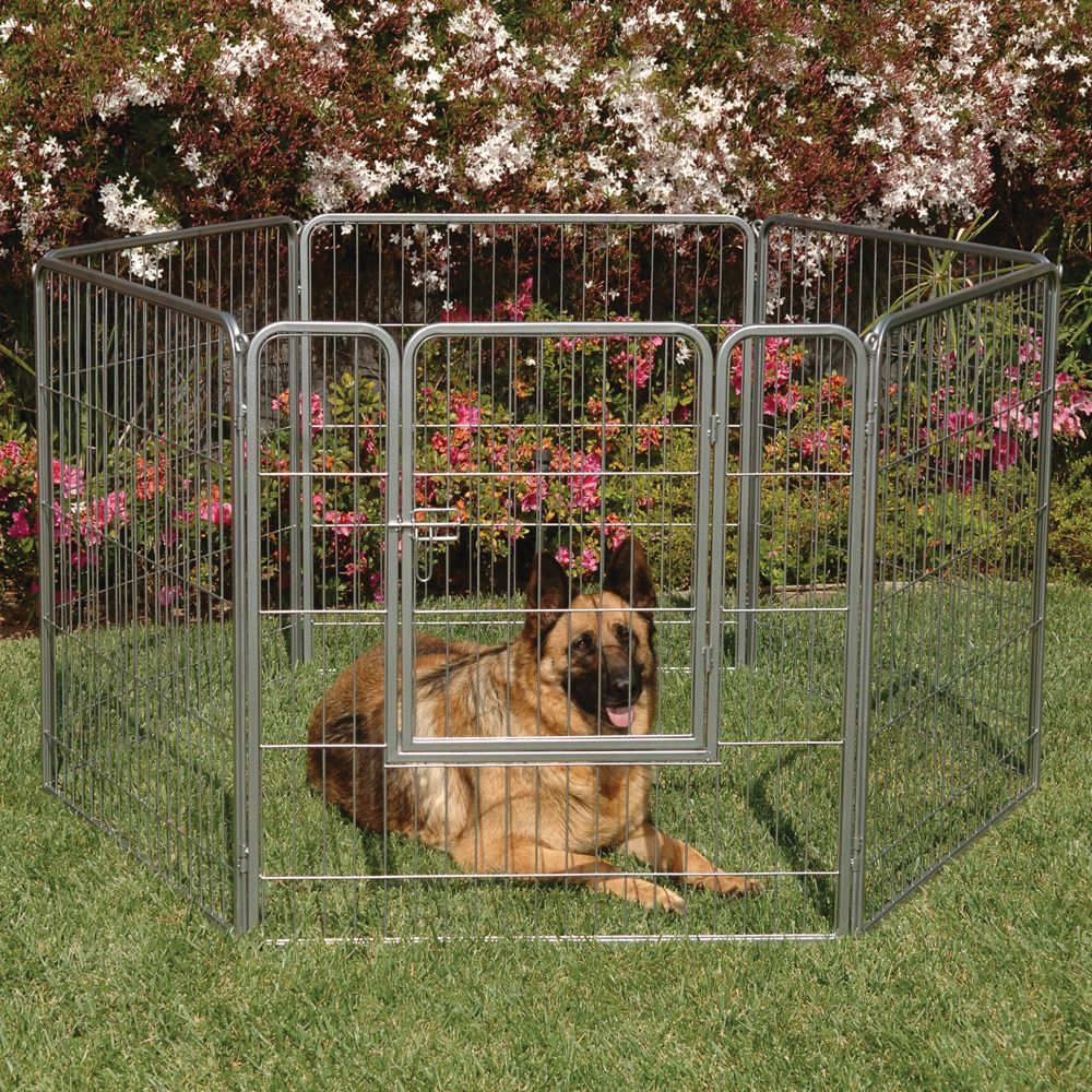 Precision Pet Courtyard Kennel Size 38w X 38h