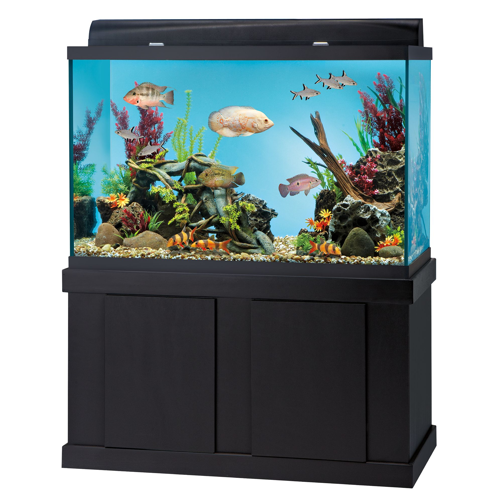 top fin reg 150 gallon aquarium ensemble