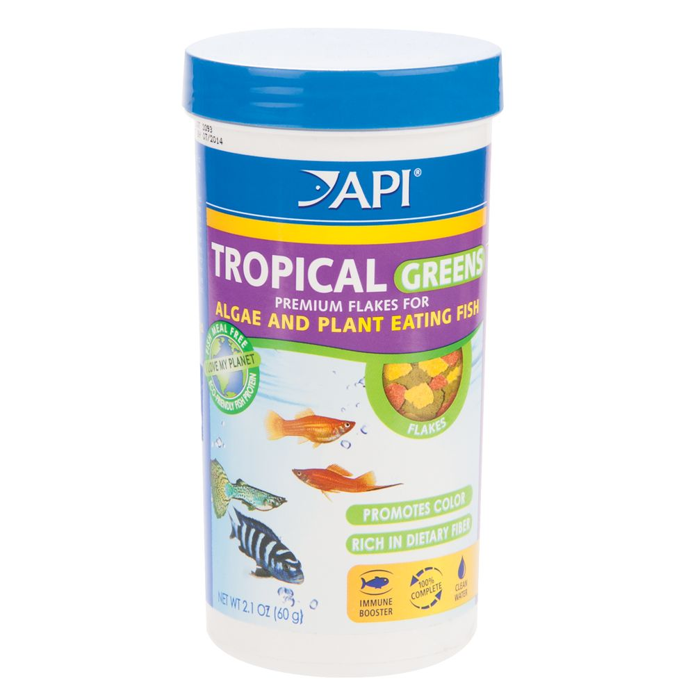 Tropical Fish Usa