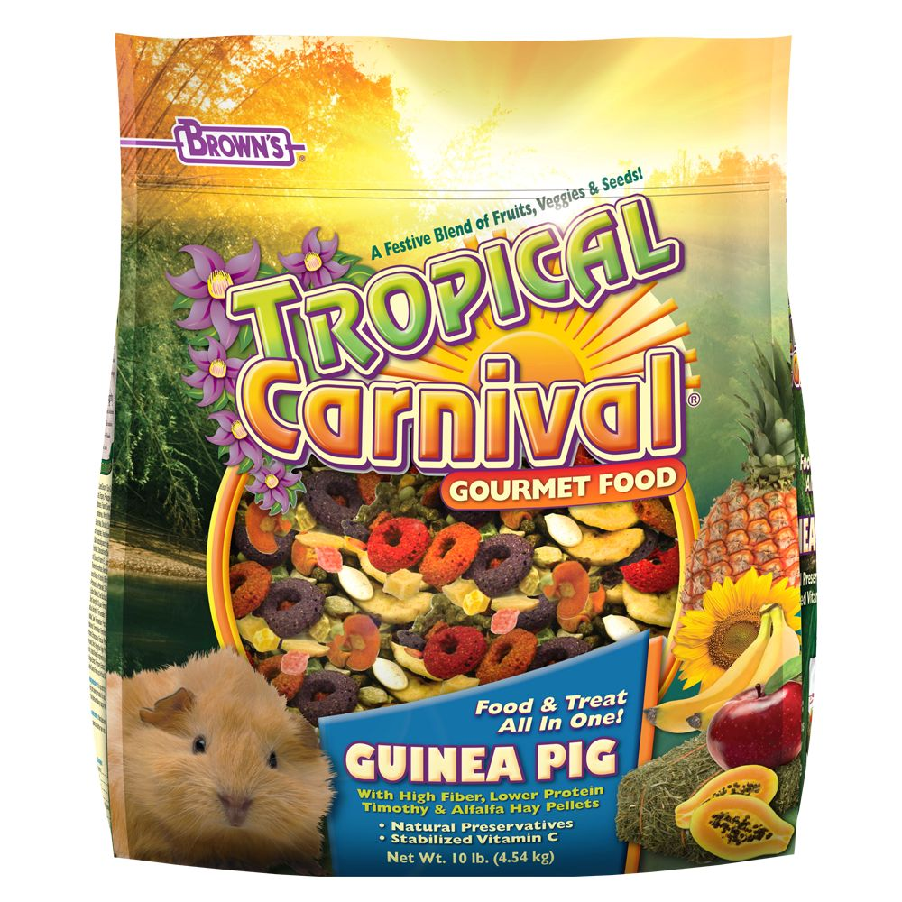 Brown's Tropical Carnival Gourmet Guinea Pig Food size: 10 Lb 5175720