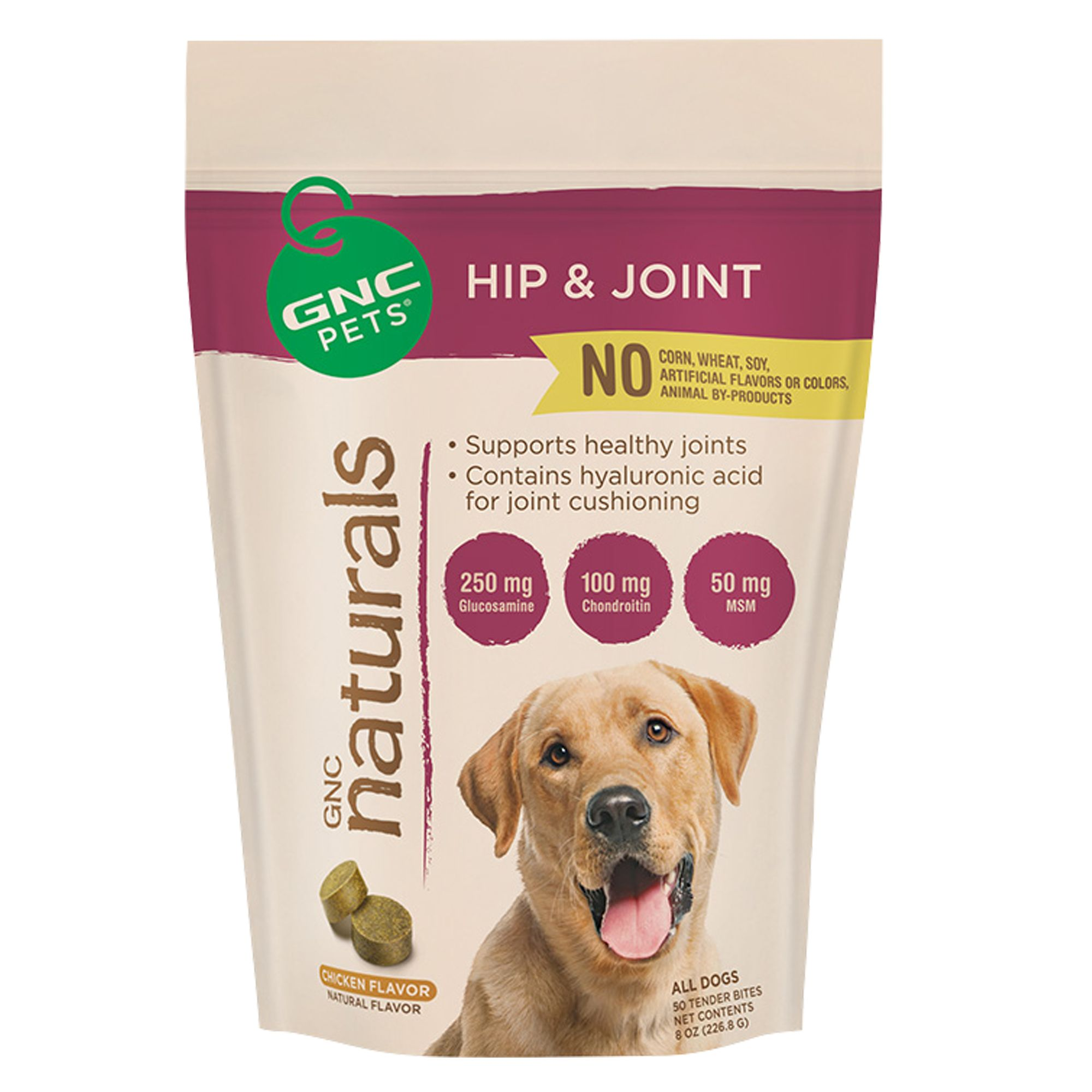 GNC Pets Hip and Joint Dog Supplement size: 8 Fl Oz 5184263
