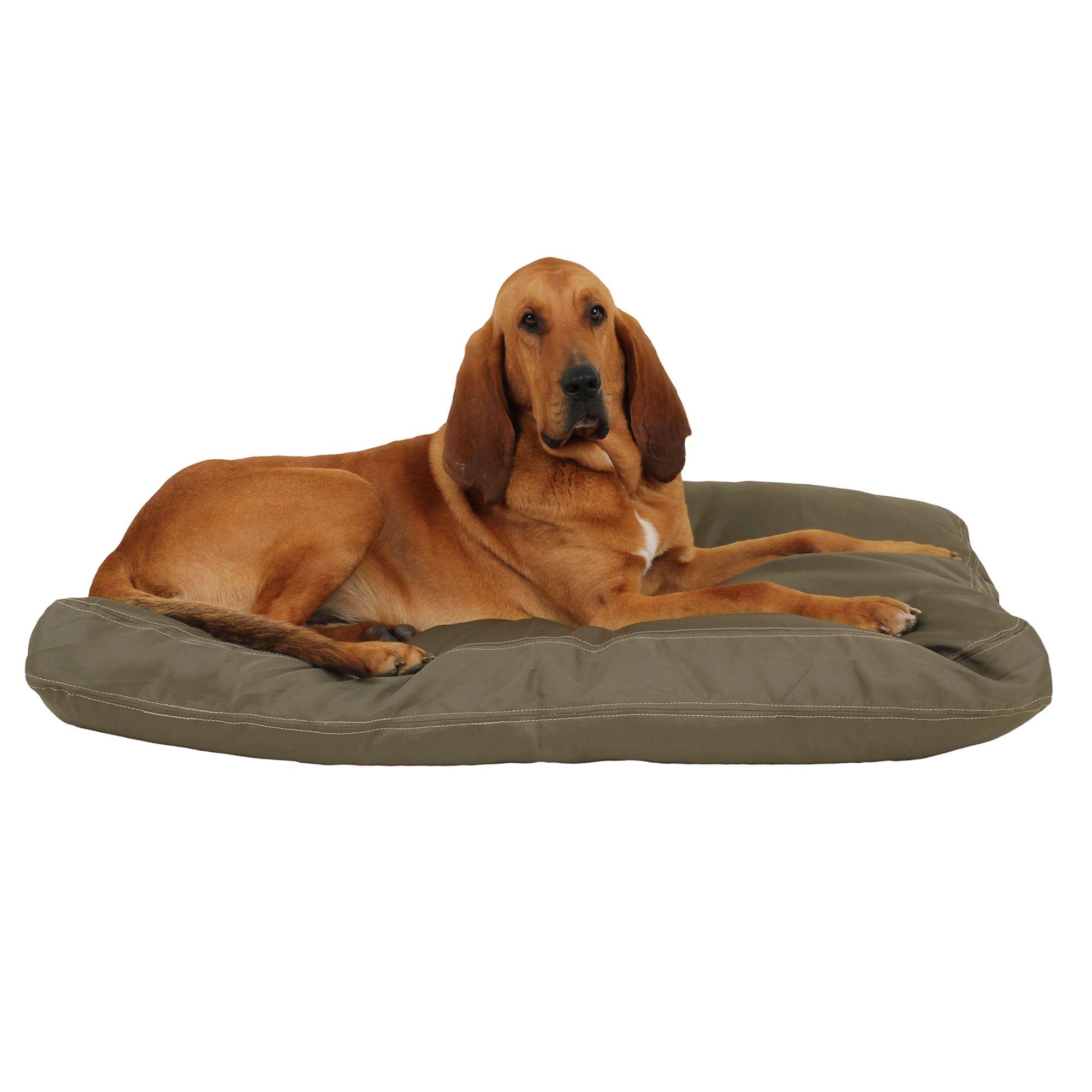 Carolina Pet Brutus Tough Personalized Pet Bed Size 52l X 40w X 4h Green