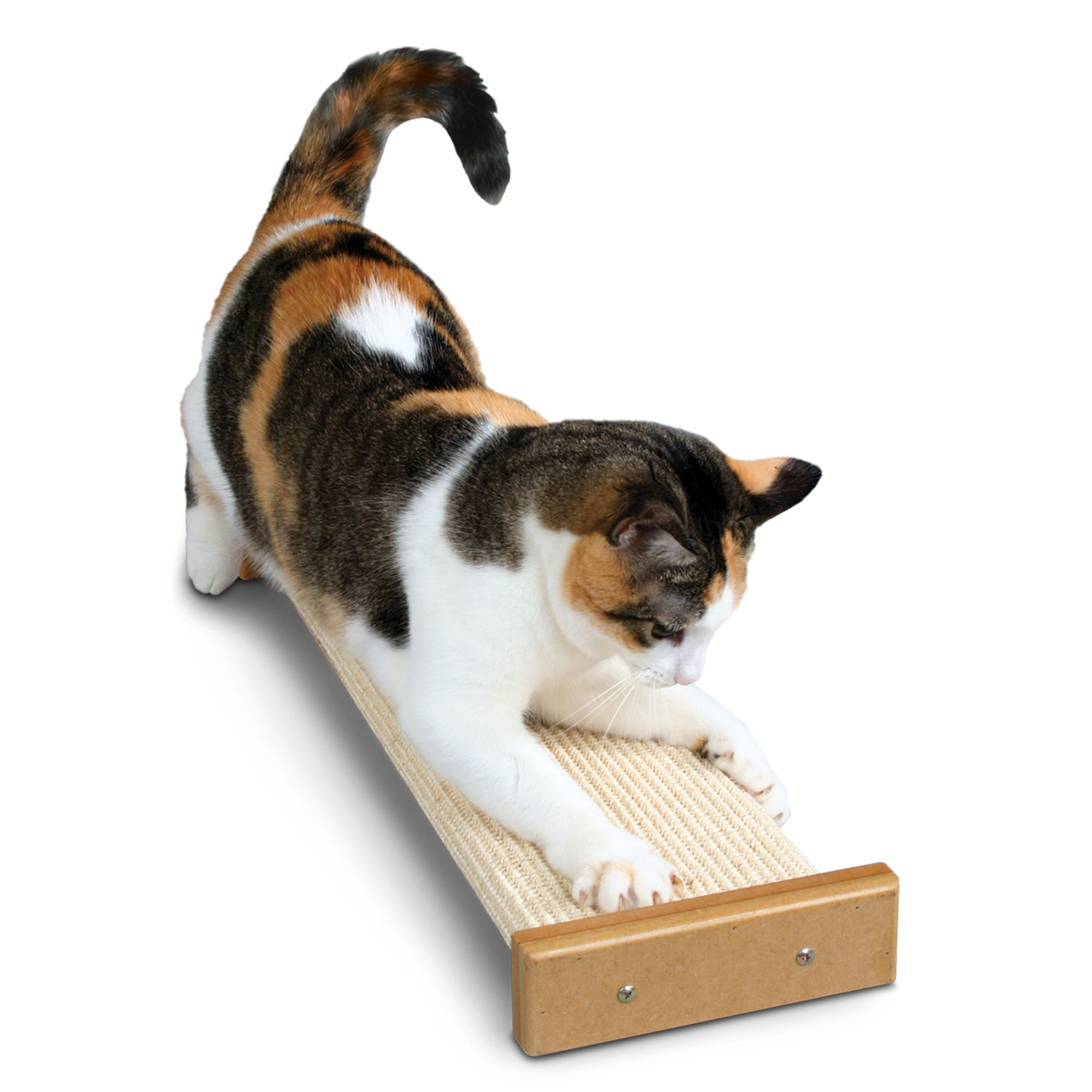 Pioneer Pet Smartcat Bootsies Cat Scratcher