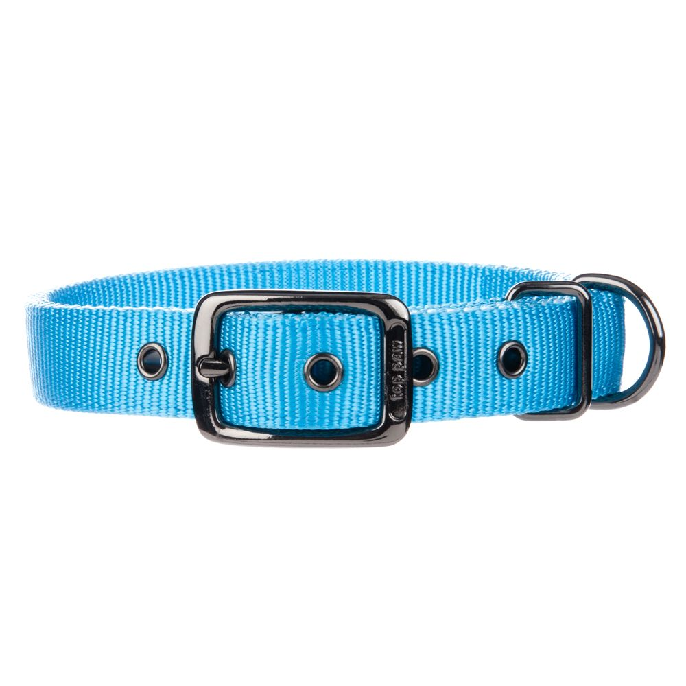 Top Paw® Dog Collar size: X Small, Blue 5195384