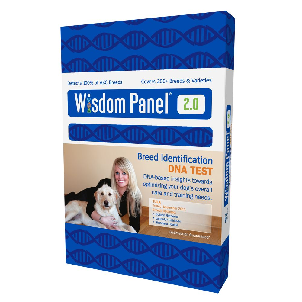 Wisdom Panel Breed Identification Dog Dna Test