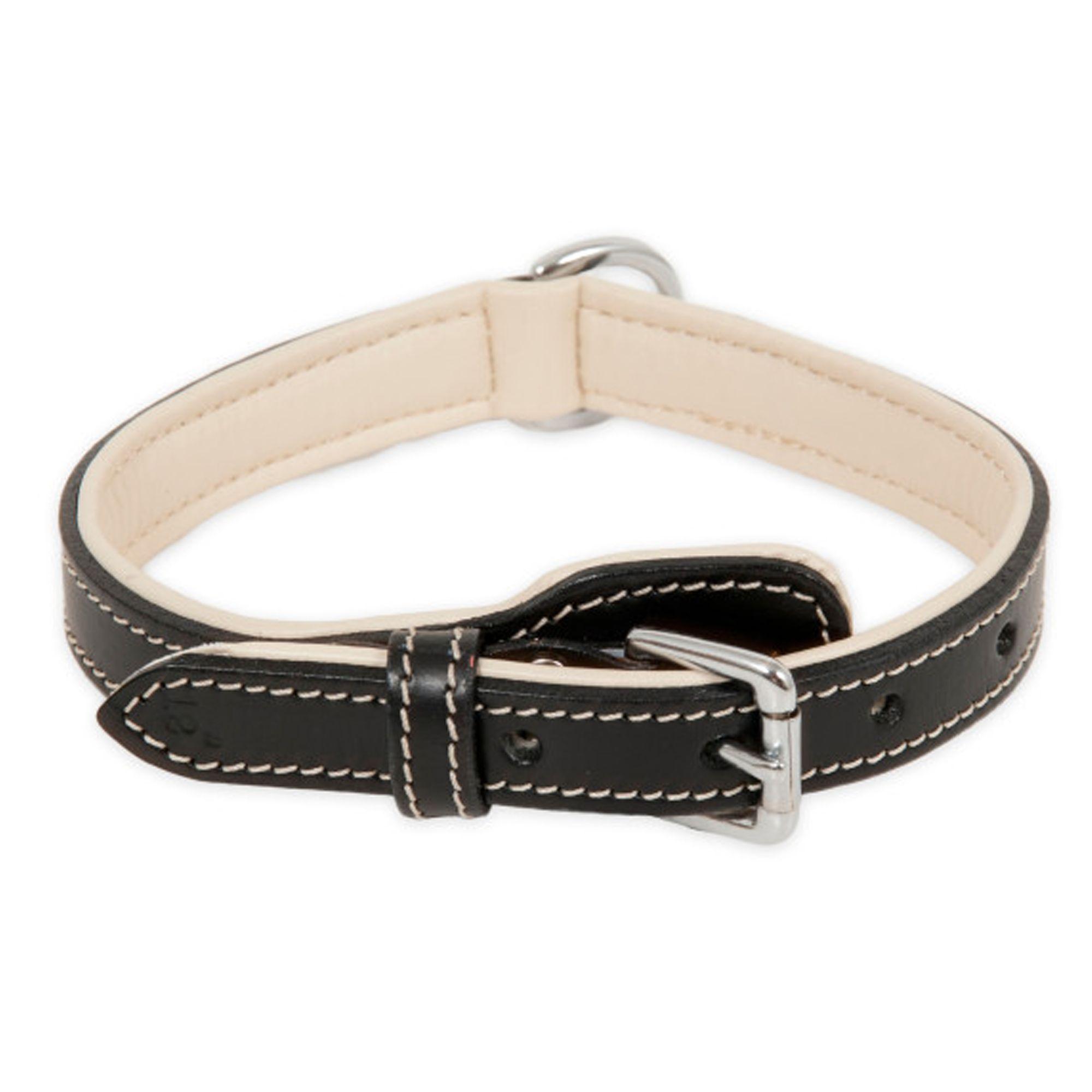 "Petmate® Dog Collar size: 20""L x 1""W, Black & Cream 5202112"