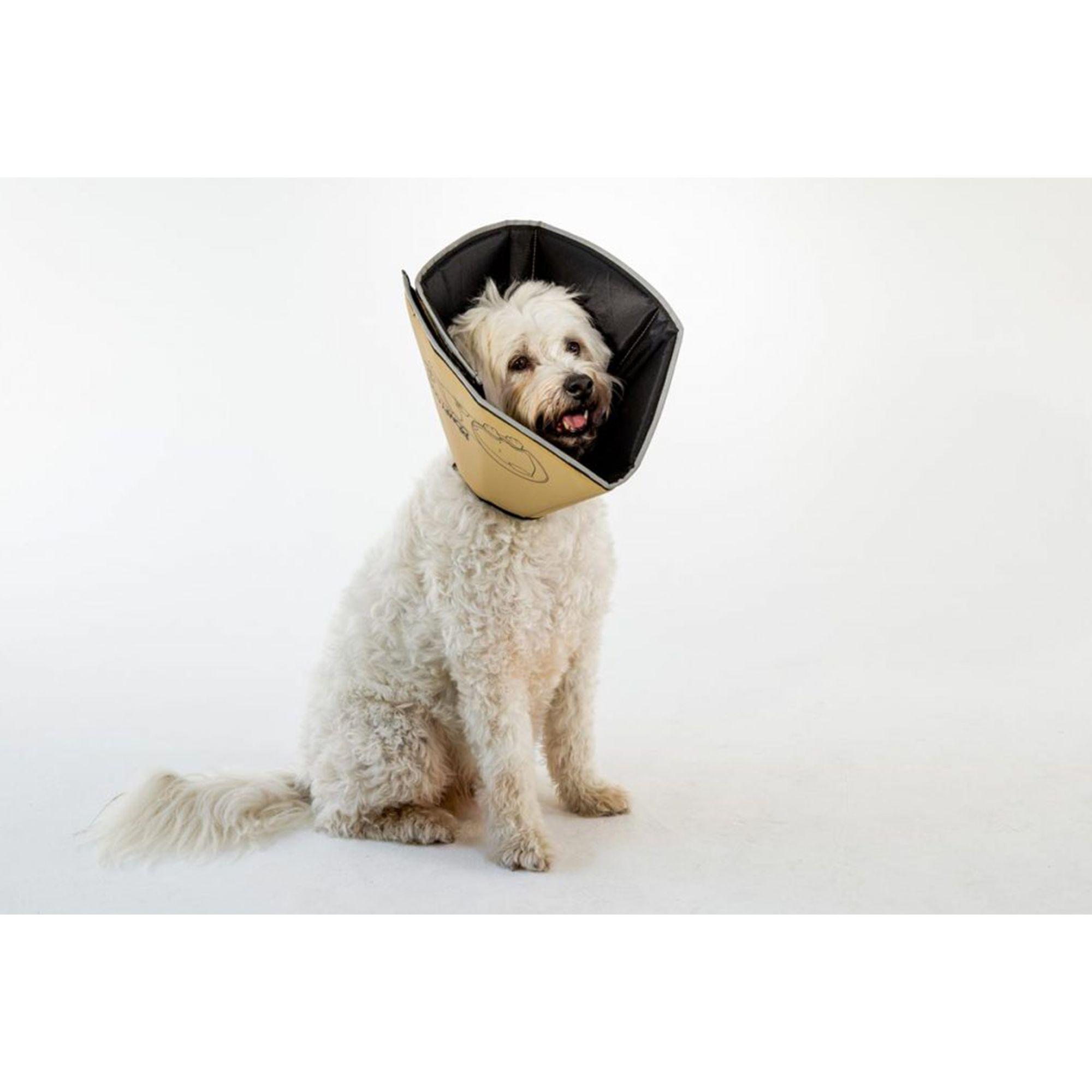 All Four Paws Comfy Cone Dog Collar Size Medium Tan