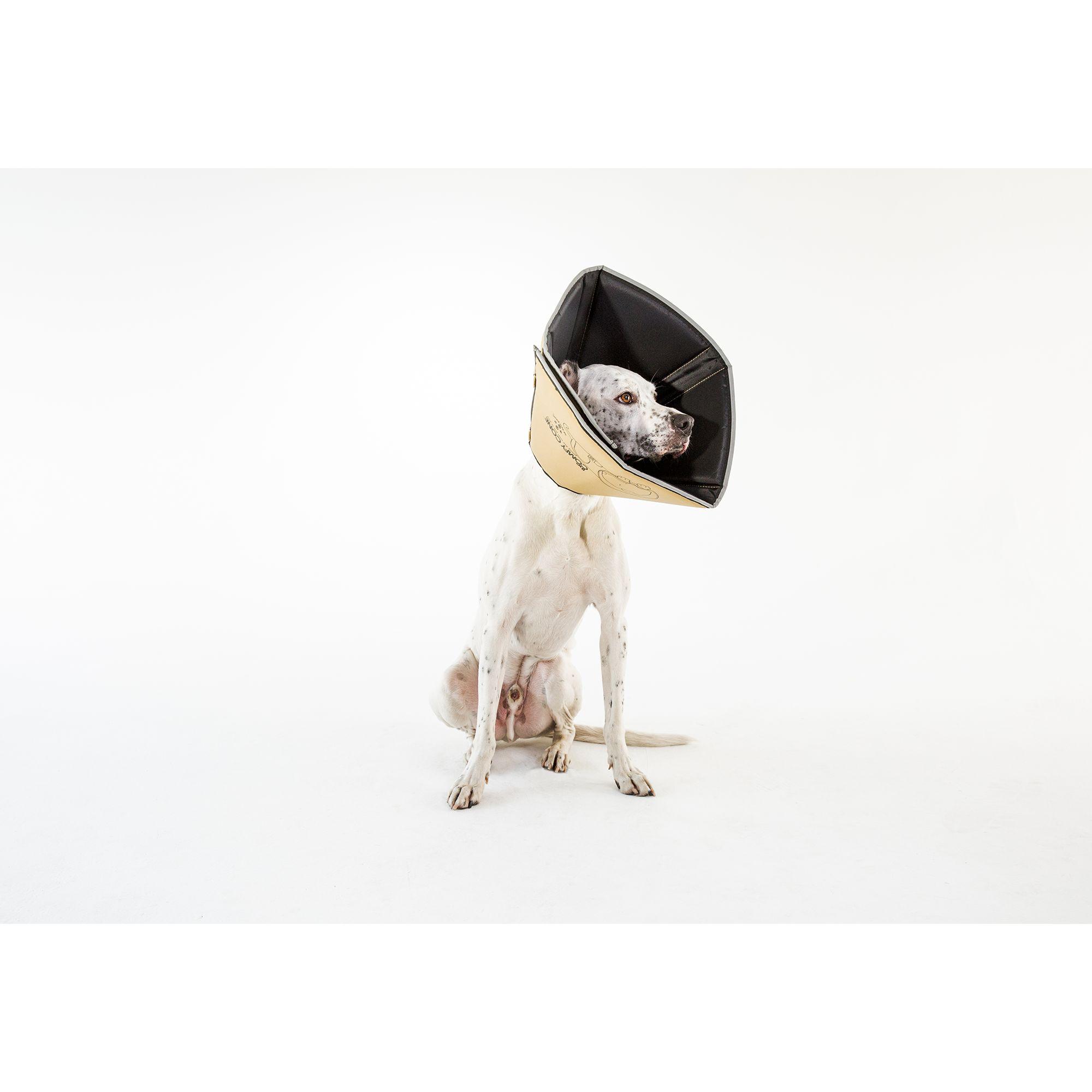 All Four Paws Comfy Cone Dog Collar Size Medium Extra Long Tan