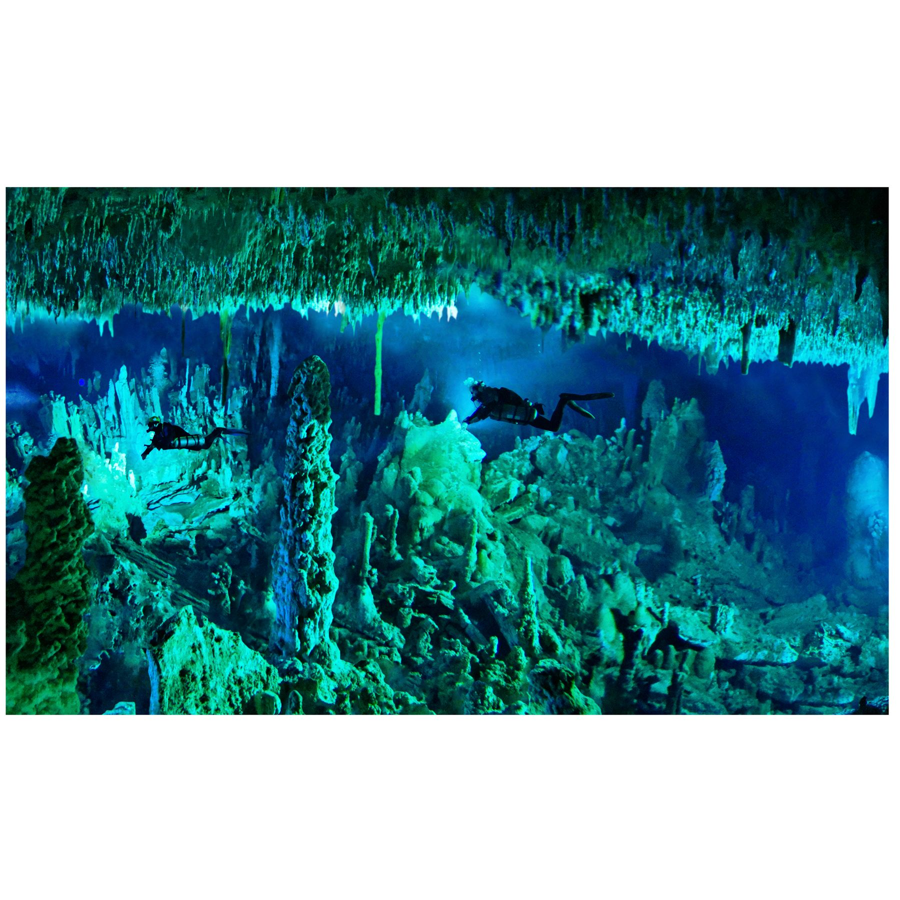 National Geographic 3 D Lenticular Cave Aquarium Background Size Small