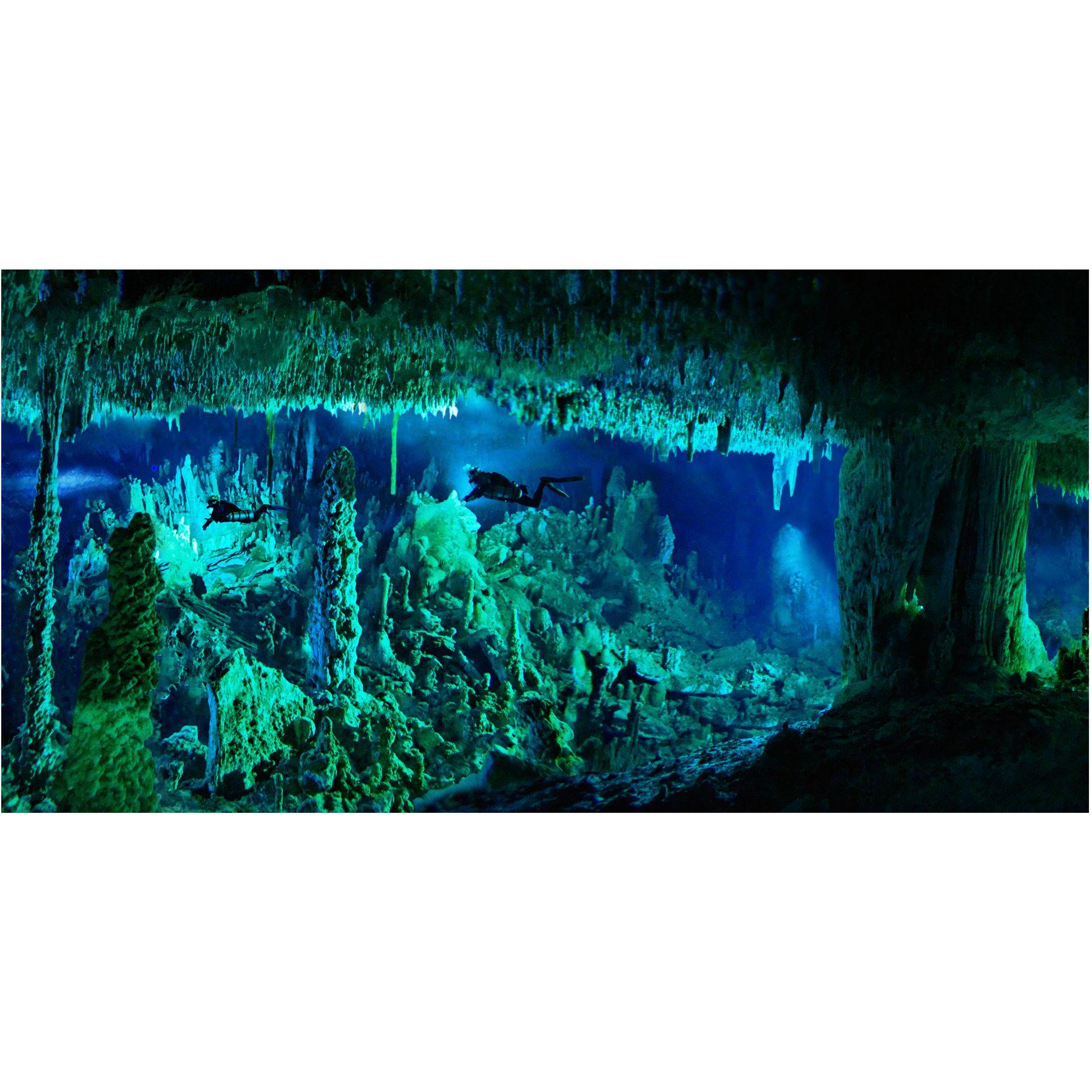 National Geographic 3 D Lenticular Cave Aquarium Background Size Medium
