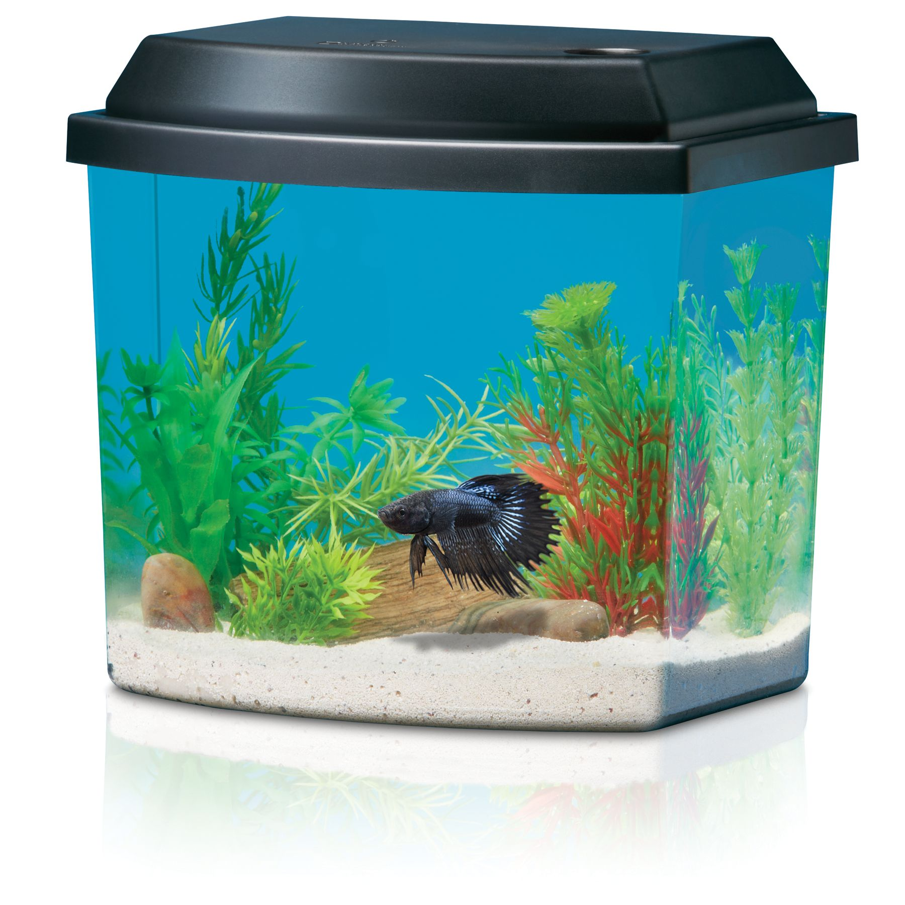 National Geographic, Half-Moon Aqua Oasis Starter Kit size: 1.2 Gal, Black & Clear 5210305