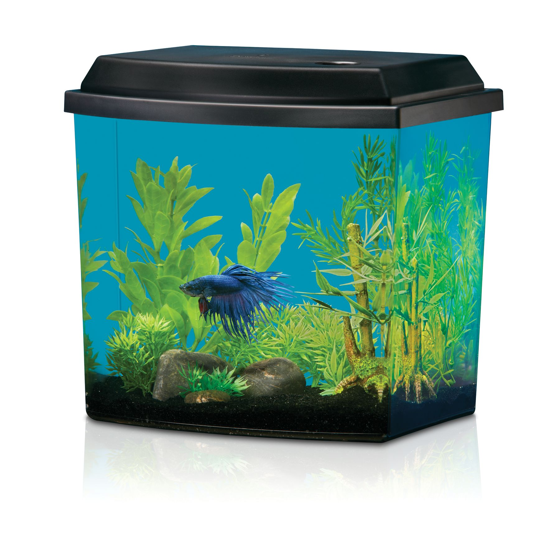 National Geographic, Half-Moon Aqua Oasis Starter Kit size: 2.5 Gal, Black & Clear 5210306